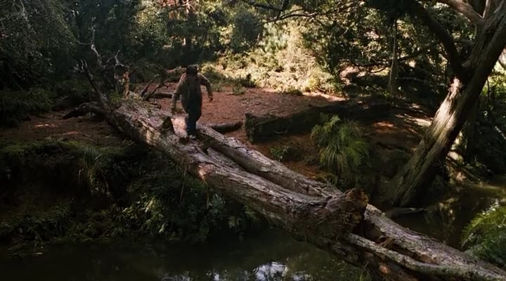 bridge to terabithia report Students must include the following on their bridge to terabithia book jacket: character summary, author biography, illustrations, book summary, and more this book report should be done after completing reading bridge to terabithia.