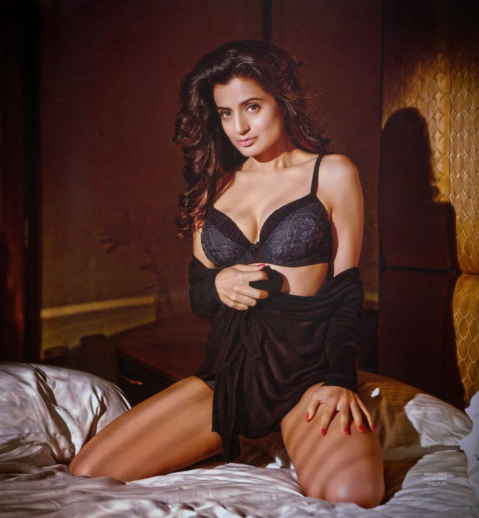 Ameesha Patel Hot Sexy Photos picture of ameesha patel