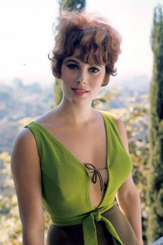 60+ Hot Pictures Of Jill St. John Are Truly Work Of Art