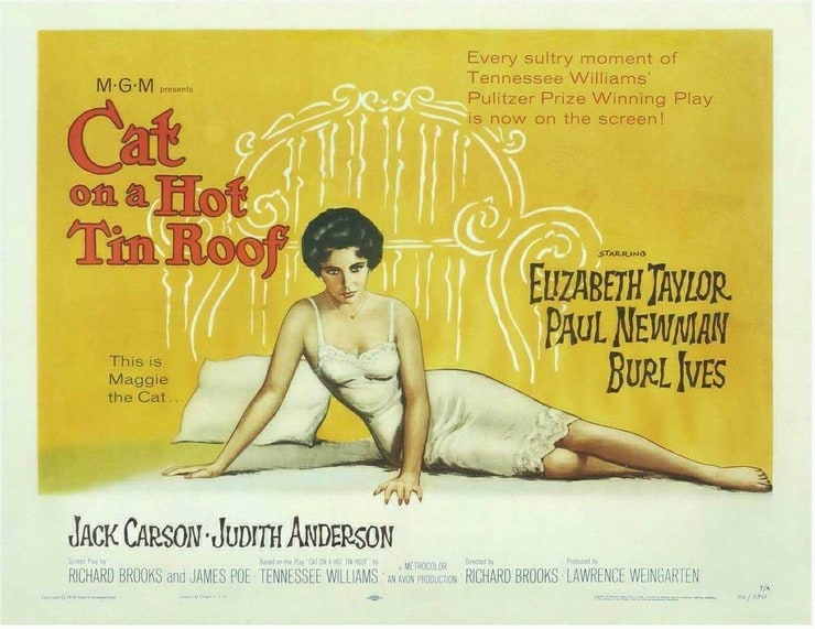 mendacity and greed in cat on a hot tin roof a play by tennessee williams ˜⇇ cat on a hot tin roof along their avarice and greed as well as their mendacity in hopes of cat on a hot tin roof, tennessee williams.