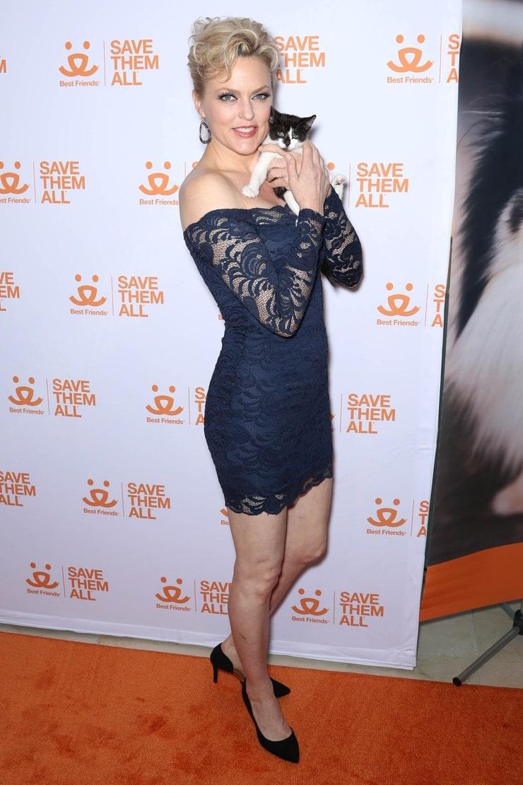 Picture of Elaine HendrixElaine Hendrix Legs