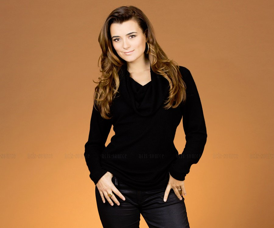 Picture Of Cote De Pablo-1935