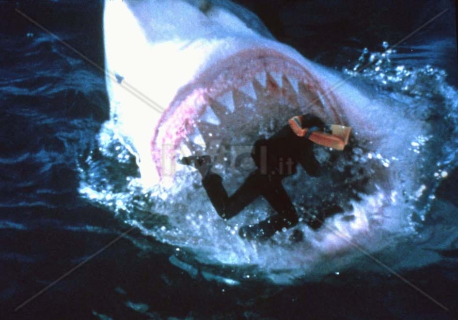 Picture of Shark Attack 3: Megalodon
