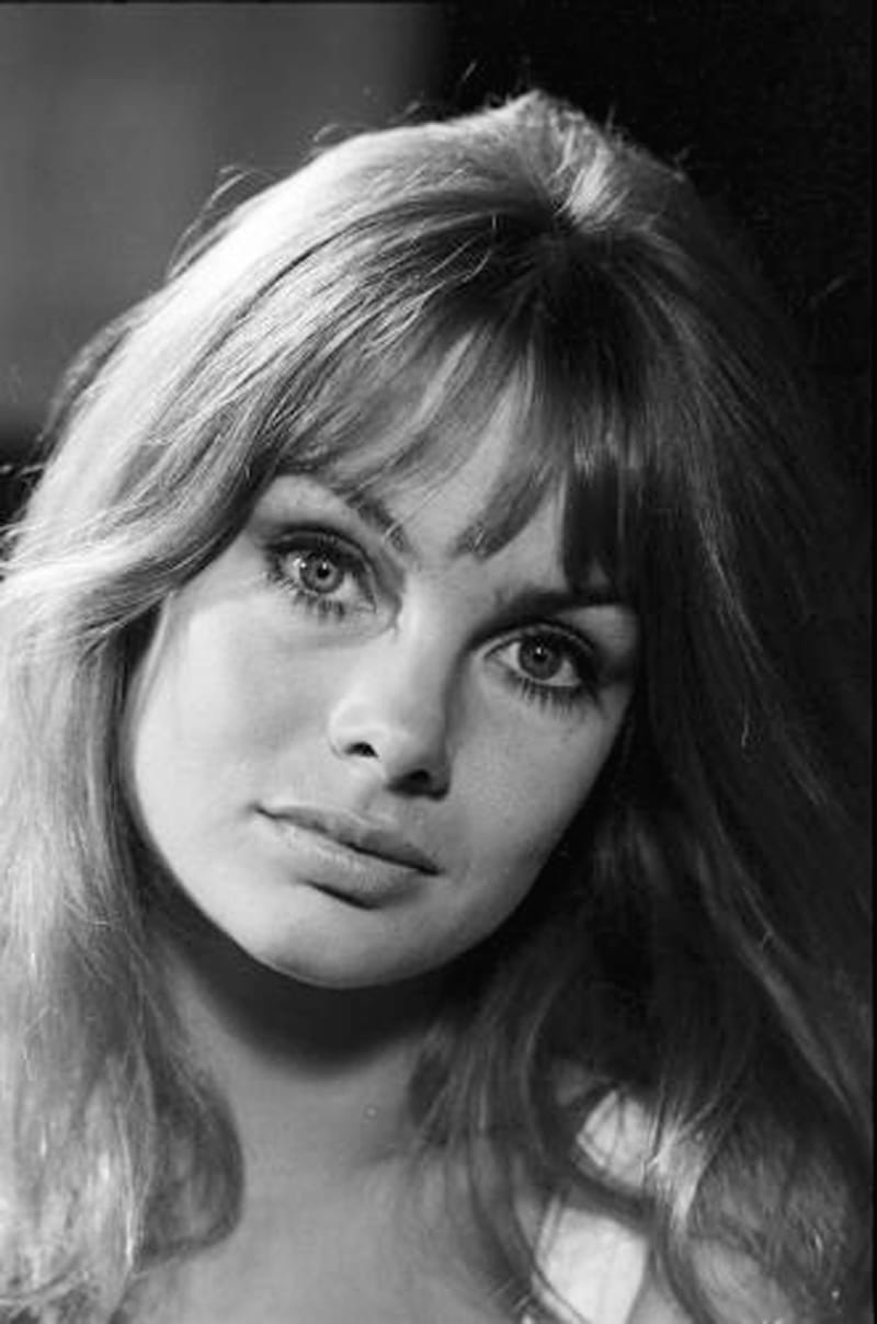 Picture Of Jean Shrimpton