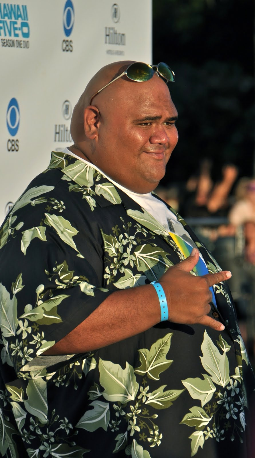 taylor wily hawaii five o