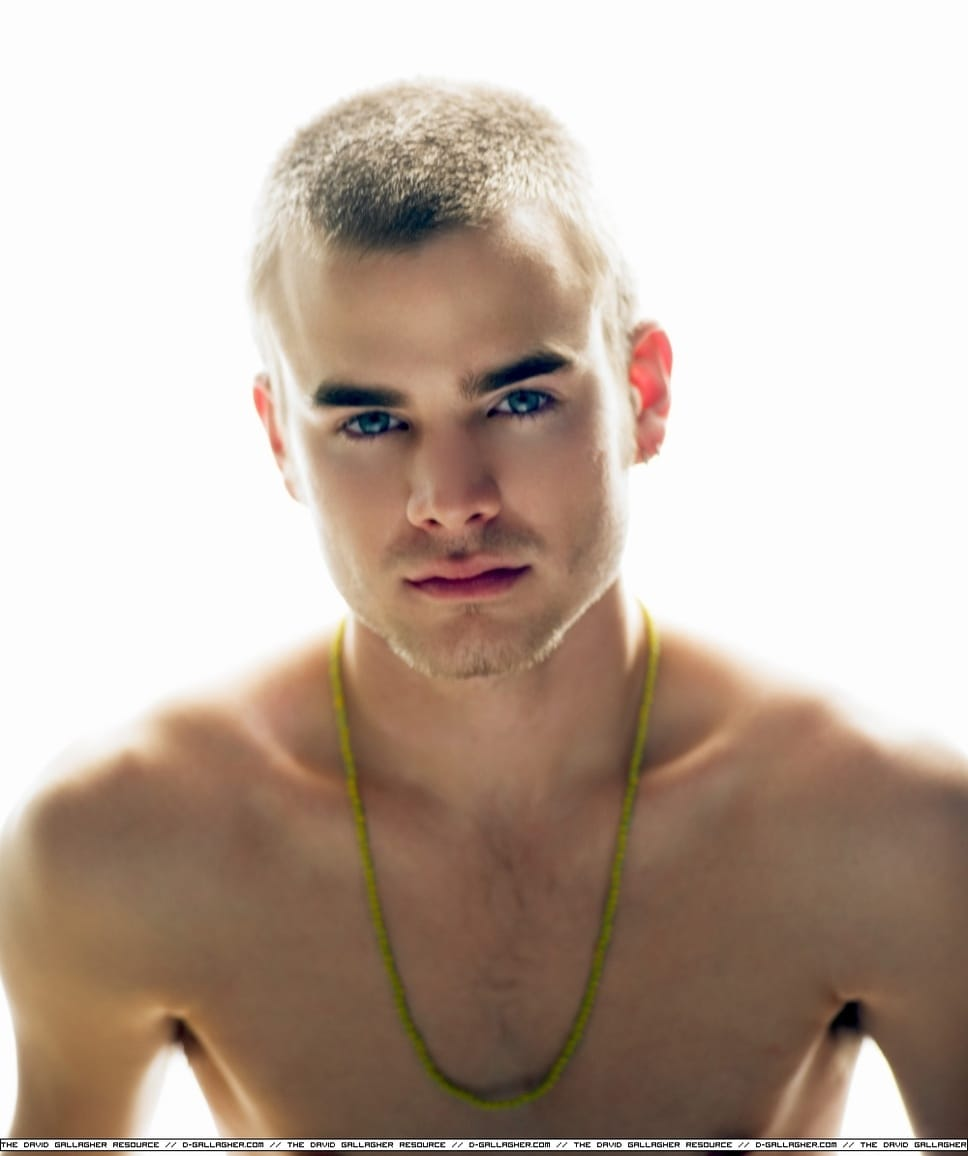 David Gallagher Nude 17