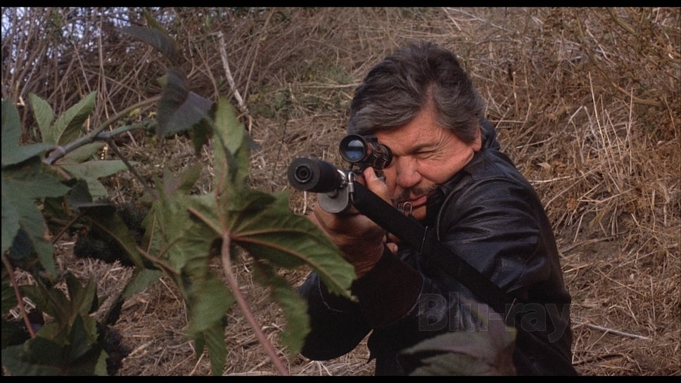 Bronson Death Wish 4 Picture of Death Wish 4 The