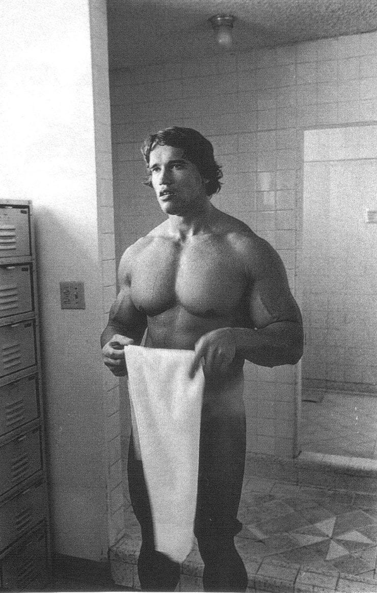 Schwarzenegger nackt porno picture