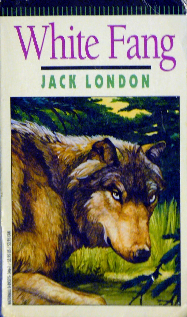 White Fang Book Cover : Picture of white fang