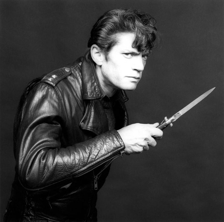 Mapplethorpe, Look at the Pictures   Robert mapplethorpe
