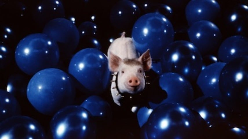 Babe: Pig in the City