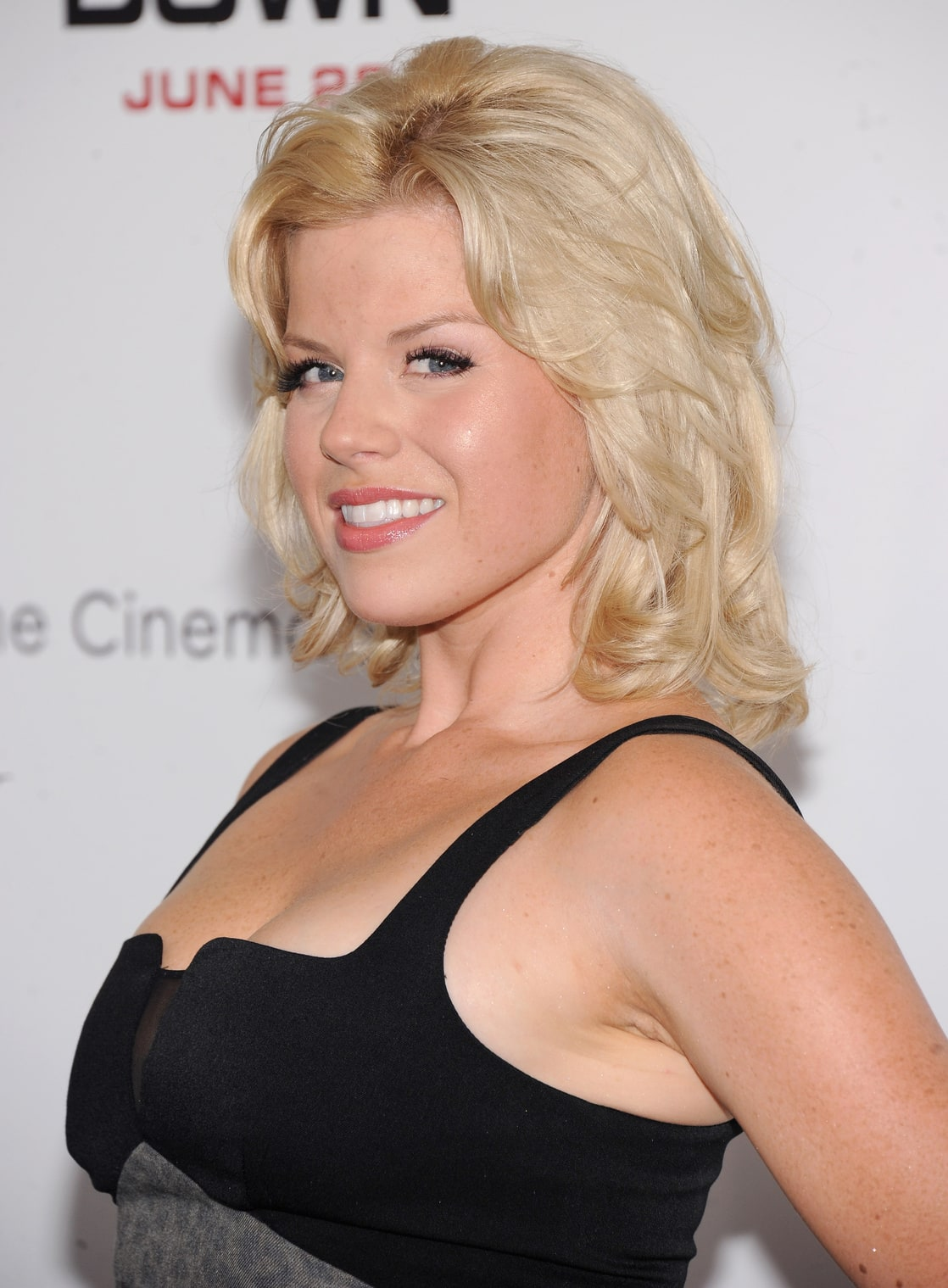 Picture Of Megan Hilty