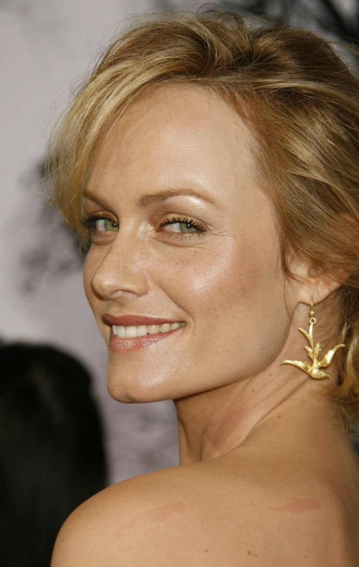 Picture of Amber Valletta