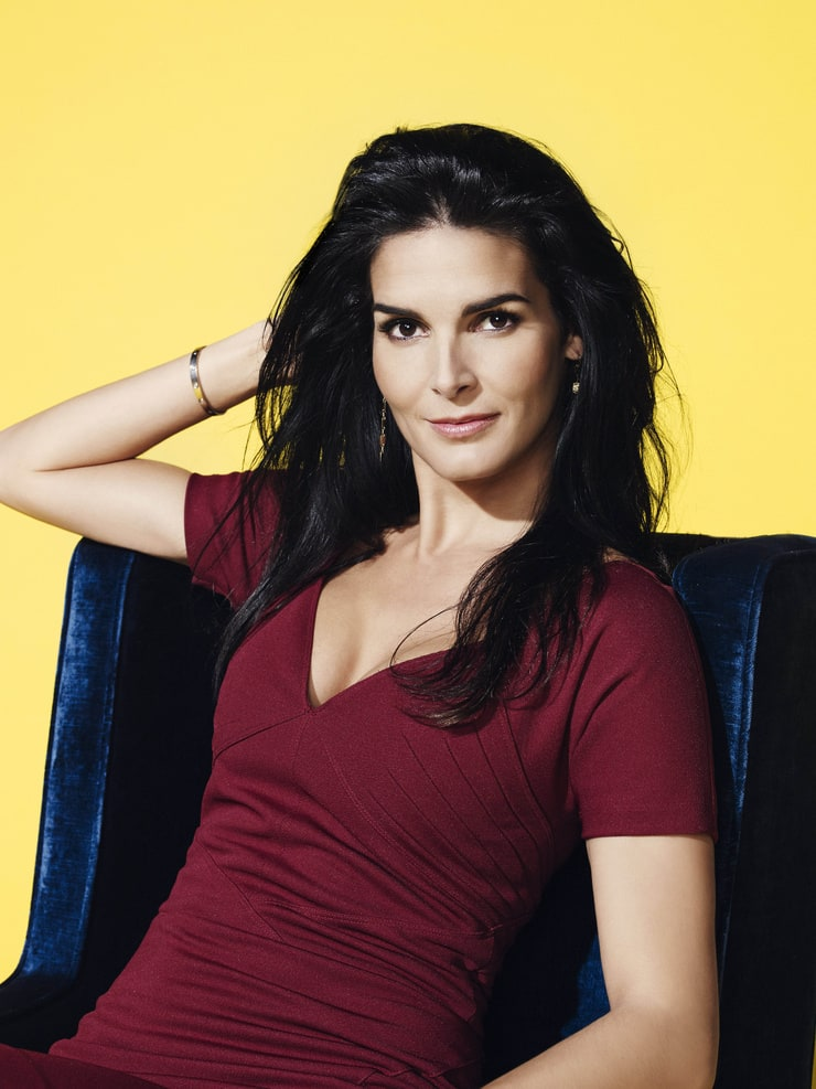 Picture Of Angie Harmon