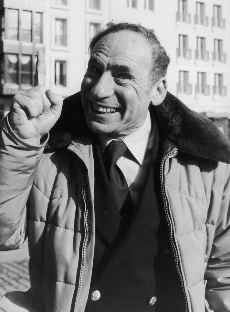 mel brooks Mel brooks is best known as a creator of broad film farces and comic parodies he began his career as a comic and a writer for the early tv variety show your show of shows.