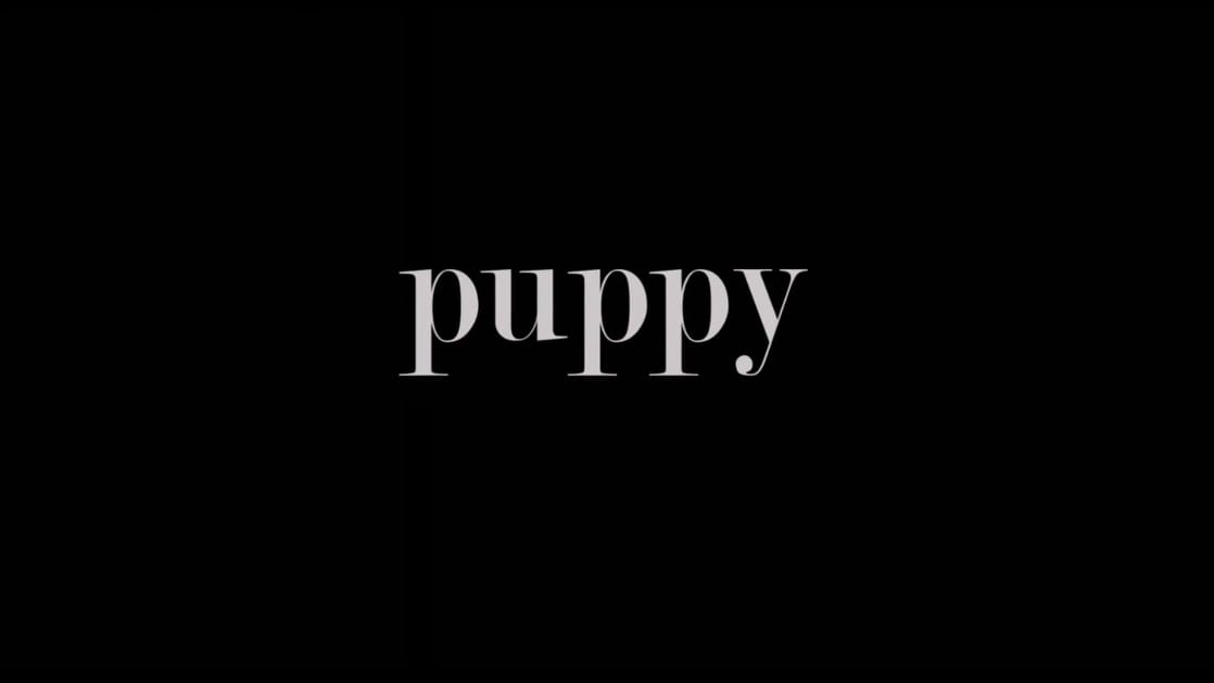 Despicable Me: Puppy