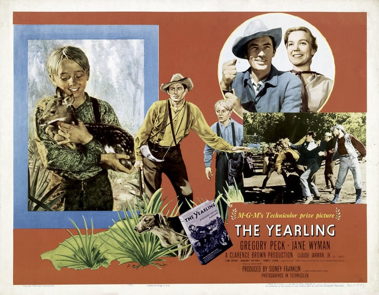 the yearling book report Sites with a short overview, synopsis, book report, or summary of the yearling by marjorie kinnan rawlings 1 the yearling summary - bookragscom the yearling.