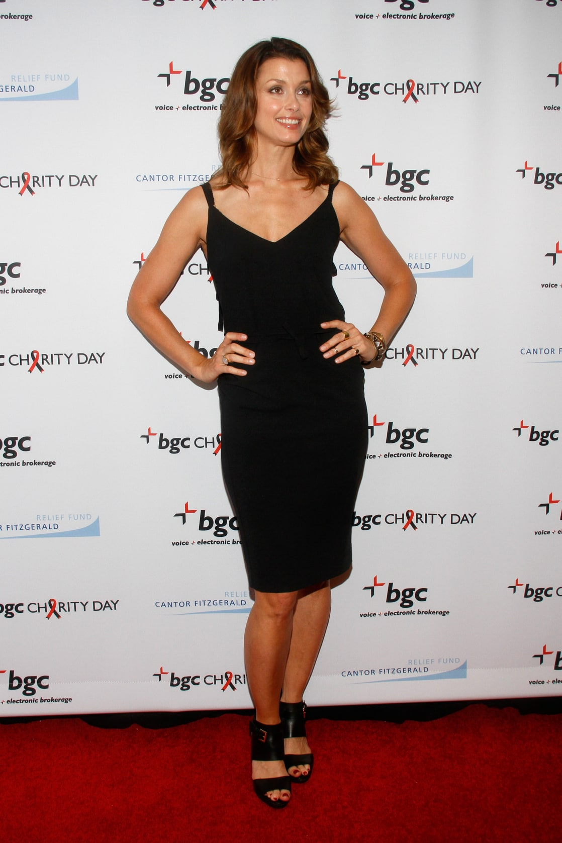 Picture Of Bridget Moynahan