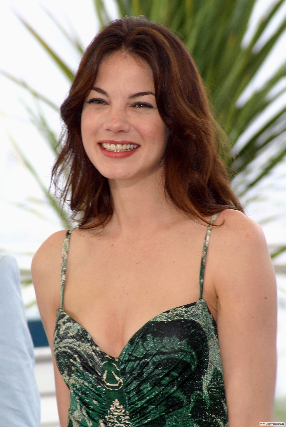 Michelle Monaghan Picture Of Michelle Monaghan