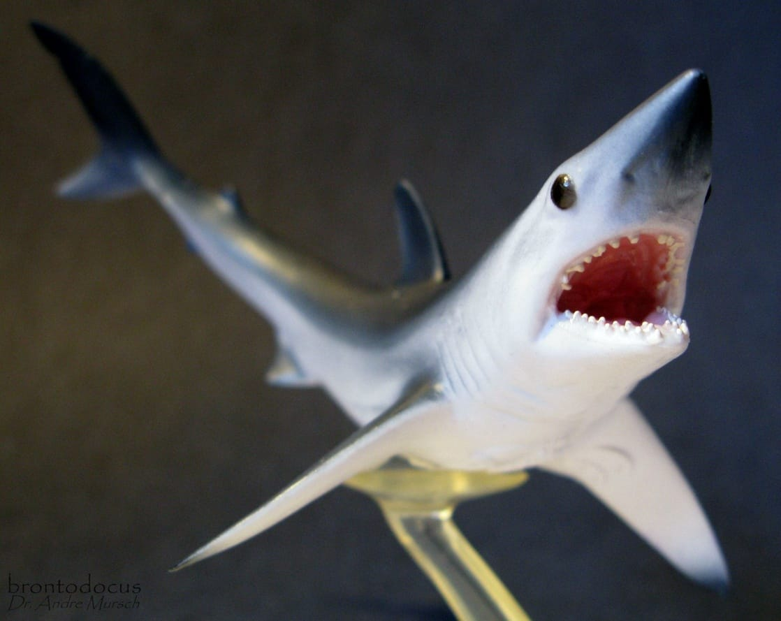 Mako Shark Toys : Picture of collecta sea life shortfin mako shark
