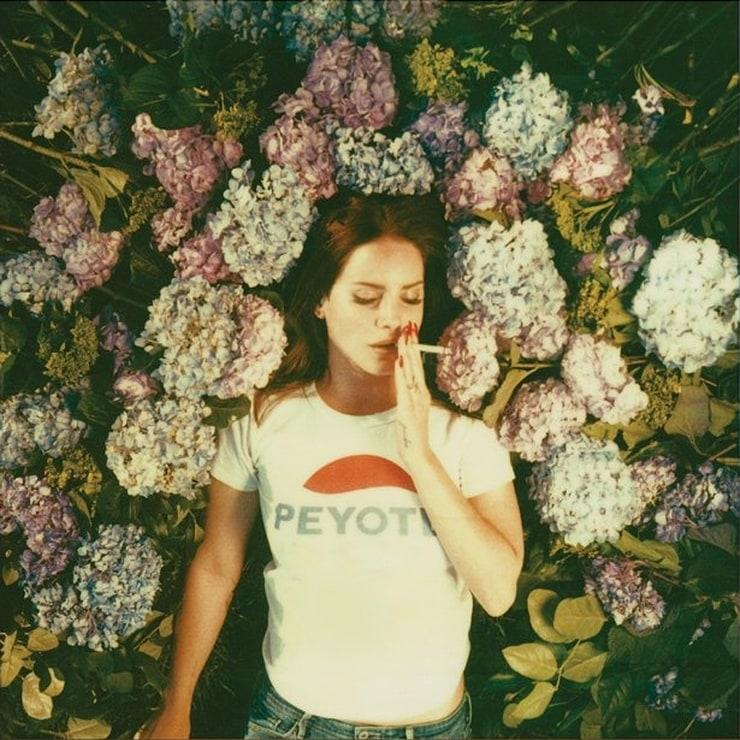 Lana Del Rey Ultraviolence Tumblr Aesthetic:Lana ...