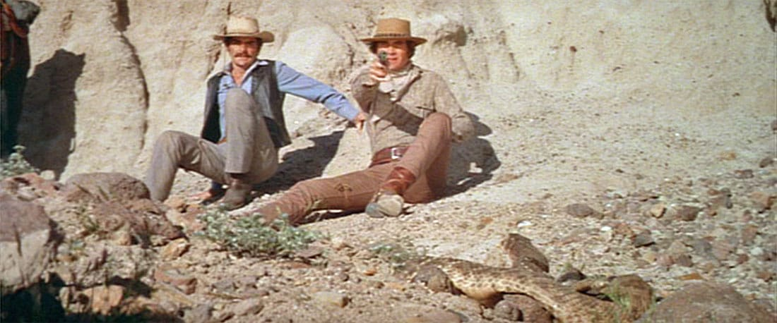 Westworld (1973)