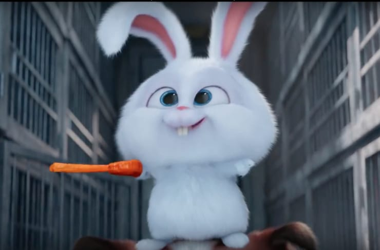 Pet the rabbit movie